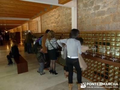 Visita enológica a Peñafiel – Ribera del Duero;rutas peguerinos